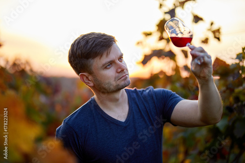 Fotografía  Man tasting red wine in a vineyard. Sunset with autumn colors.