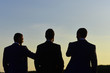 Silhouettes of men standing against sunset. Leaders discuss project.