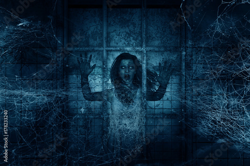 3d illustration of Scary ghost woman in haunted house,Horror background,mixed me Canvas Print