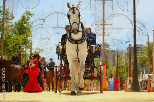 Caballo tirando de un carruaje en la Feria del Caballo, en Jerez de la Fontera (Cadiz)