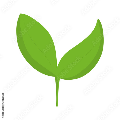 leaves icon image Wall mural