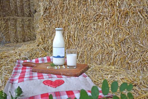 Fototapeta Mleko w słomie