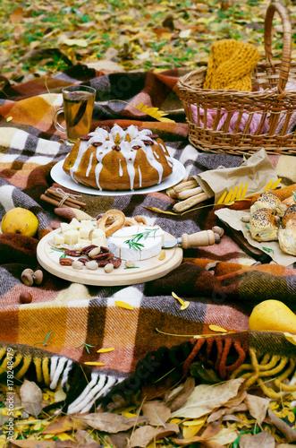 Plakat Jesień piknik, lunch na zewnątrz, koncepcja żywności
