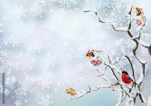 Foto Winter background with snowflakes and a bird bullfinch on the branches of a tree