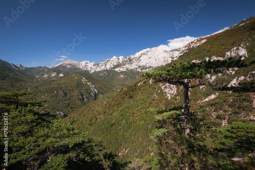 Fotografie, Obraz  Velebit mountain in Paklenica National Park