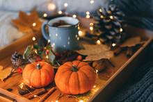 Autumn Still Life. Cozy Compos...