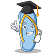 Graduation flip flops character cartoon