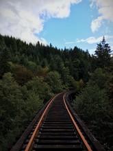 Train Track Bridge In Treetops