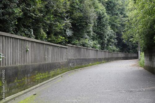 Tuinposter Weg in bos 塀_3