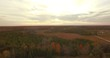 Aerial view of forest and farmland during fall sunset.
