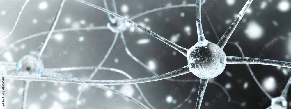 Fototapety, obrazy: neuron close-up, nerve node, neural network close-up, banner