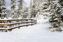 Snowy Path Lined With A Wooden...