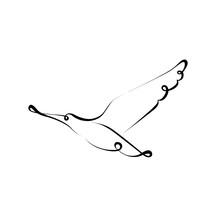 Bird Silhouette Line Calligraphy Style. Vector Illustration. Minimal Line Art Tattoo Design. Animal Symbol For Freedom.