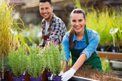 Fotografiet  Garden Center Employees