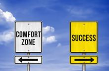 Career Decision - Comfort Zone...