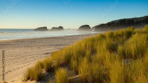 Plakat Piasek diuny i trawy na plaży, działo plaża, Oregon