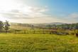 canvas print picture - Field Near Smith Mountain Lake VA