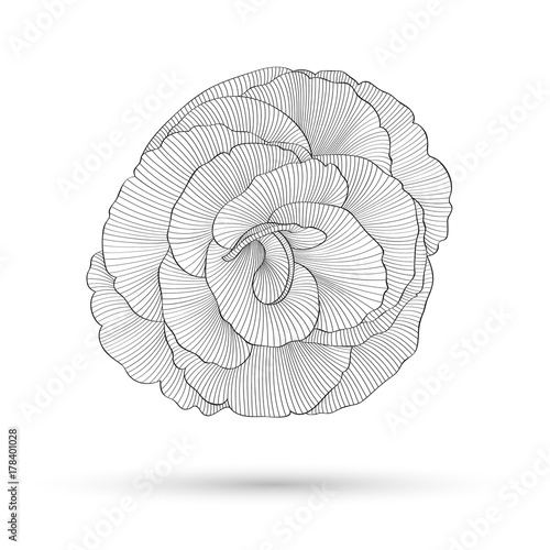 Recess Fitting Spiral Abstract floral background. Vector flower rose. Element for design.