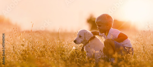 Photo  Young Child Boy Training Golden Retriever Puppy Dog in Meadow on Sunny Day