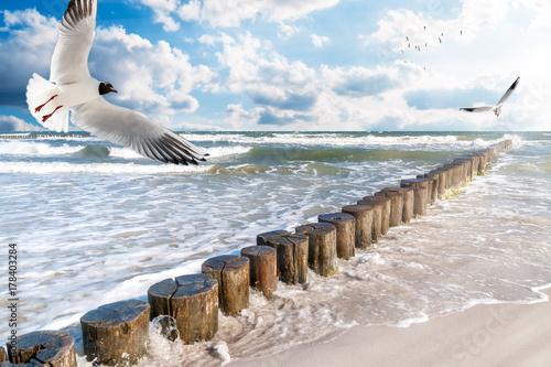 In de dag Noordzee Ostseeküste