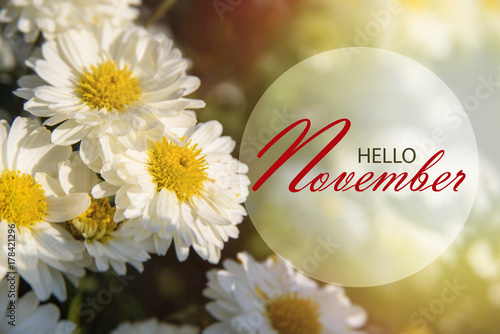 Hello November Wallpaper Wonderful Autumn Background With