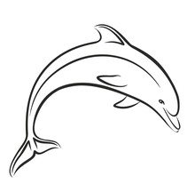 Dolphin Sketch In Jump.