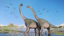 Couple Of Brachiosaurus Altith...