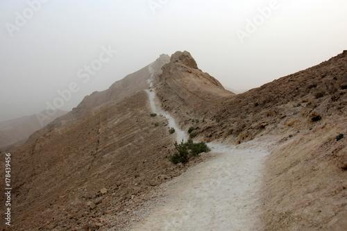 Fototapeta Pustynia Judzka na Bliskim Wschodzie, na zachodnim wybrzeżu Morza Martwego