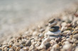 A pyramid of stacked flat pebble stones 8653.