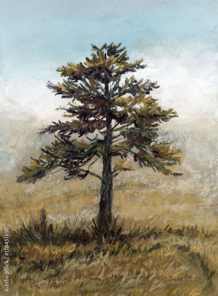Pastel landscape with lonely pine