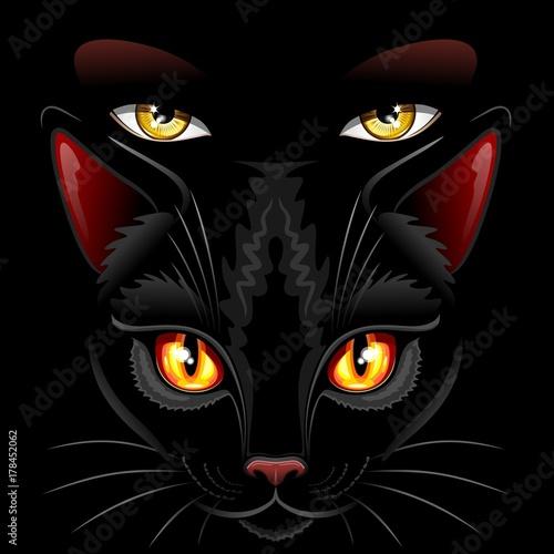 Aluminium Prints Draw Witch Black Cat Eyes Sorcery