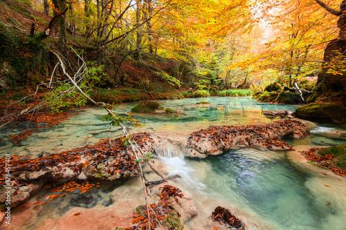 Wall Murals Melon colorful autumn landscape at urederra source, Spain