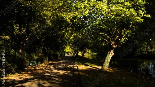 Papiers peints Jardin Nature Photography