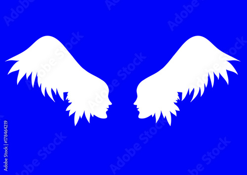 Fotografie, Obraz  vector angel wings.