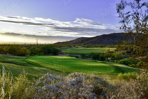 Green in a desert golf course