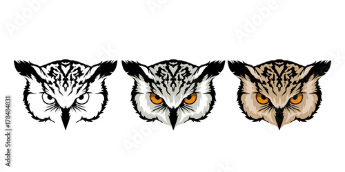 Photo Stands Owls cartoon color set of owl heads on white background.