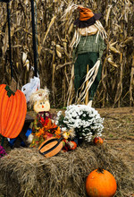 Fall Décor At A Corn Maze