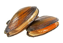 River Mussels Isolated On A Wh...
