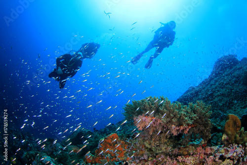 Plakat Nurkowie badający rafę koralową pod wodą