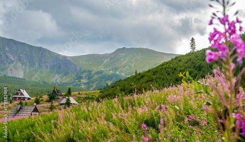 Photo  Beautiful scenery in Polish Tatra Mountains