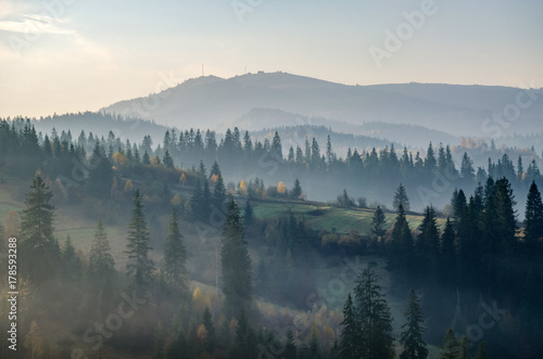 Poster Ochtendstond met mist Foggy morning in the Ukrainian Carpathian Mountains in the autumn season