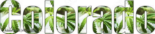 Cuadros en Lienzo Colorado Marijuana Logo With Weed Leafs High Quality