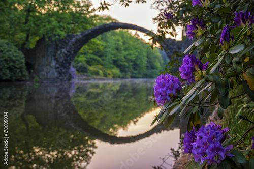 azalea-and-rhododendron-park-kromlau-piekne-kwiaty-z-mostem-diabla-w-tle