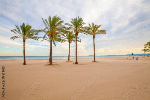 valencia beach palms view at sunset