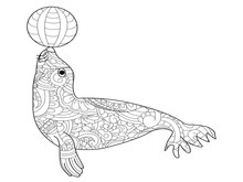 Fur Seal Coloring Raster For A...