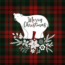 Merry Christmas Greeting Card, Invitation. Hand Drawn White Polar Bear With Fir Tree Branches. Floral Decoration With Poinsettia And Mistletoe. Tartan Checkered Plaid, Vector Illustration Background.