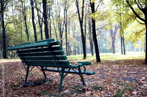 Wooden Bench In Autumn Park Autumn Landscape Buy This