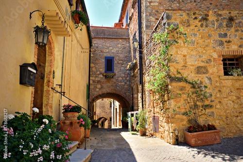 Aluminium Prints Tuscany case tradizionali nel vecchio borgo toscano di Bibbona, in Val di Cecina, Livorno Italia