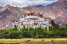 Thiksey Gompa, Ladakh, India