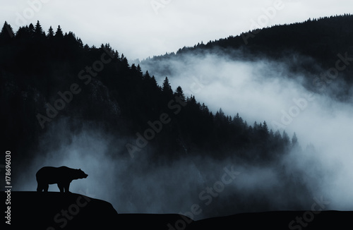 Fotografie, Obraz minimal wilderness landscape with bear silhouette and misty mountains